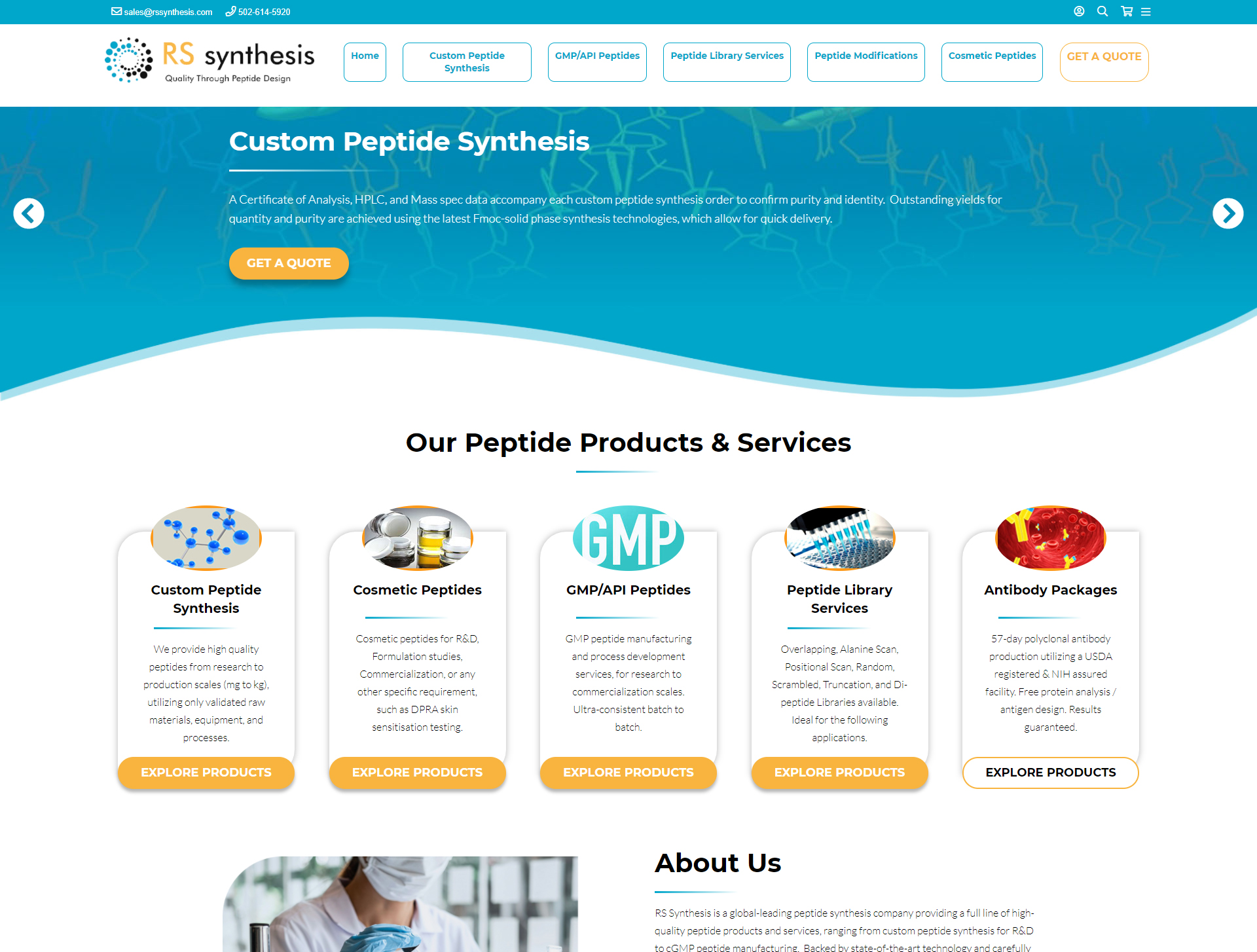 Rs Synthesis portfolio image